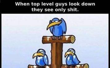 Scheiße fällt nach unten