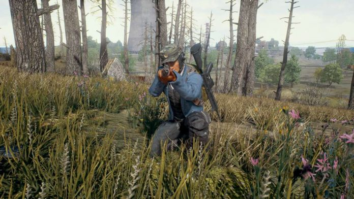 Playerunknown's Battleground Screenshot