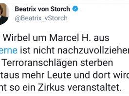 Tweet Beatrix von Storch Marcel H. Herne